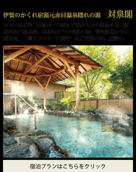 伊賀のかくれ宿湯元赤目温泉隠れの湯 対泉閣