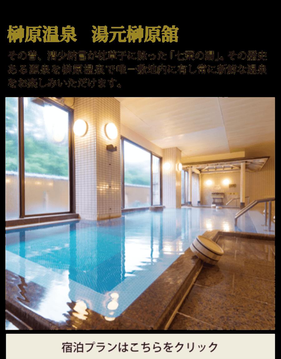榊原温泉 湯元榊原館