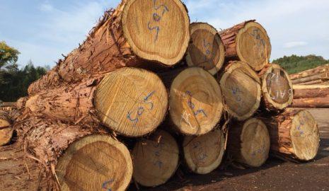 ヤマカ木材